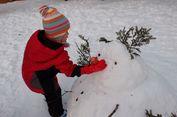 Berita Foto: Musim Dingin di Resor Ski Jepang