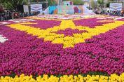 Ladang Tulip Terbesar Sedunia Sambut Turis di Istanbul