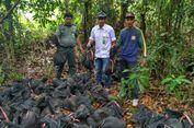 89 Ekor Trenggiling yang Akan Diseludupkan ke Malaysia Dilepas di Taman Nasional