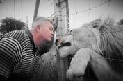 Peternak di Afsel Pelihara Singa Jantan untuk Menjaga Rumah