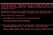 Pembuat 'Ransomware' Petya Minta Tebusan Rp 3 Miliar