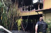 Rumah Pemiliknya Terbakar, Buaya Berusia 70 Tahun Lolos dari Maut