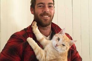 Hilang 3 Bulan, Kucing Kembali dari Jarak 1.000 Km ke Pemiliknya