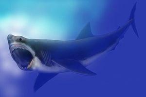 Kejadian Kepunahan Predator Laut Terbesar Diungkap, Beginilah Kisahnya