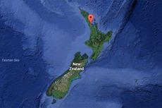 Demam Tifoid Jangkiti Warga di Selandia Baru