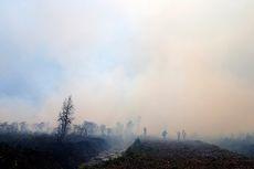 Kebakaran Kembali Landa Lahan Gambut di Aceh Barat