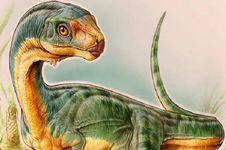 Keberadaan 'T. rex Vegetarian' Diungkap, Inilah Wajahnya