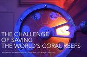 Tidak Cuma Asyik, Permainan Ini Juga Menyelamatkan Lautan