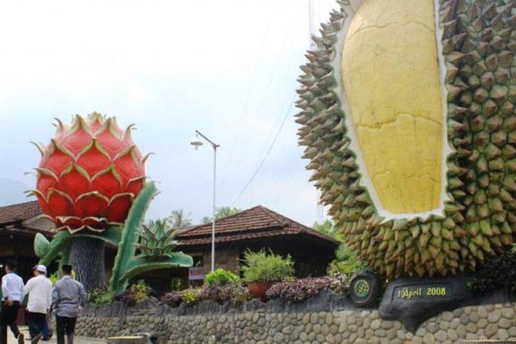 Tugu durian yang menyambut pengunjung di Kebun Durian Warso.