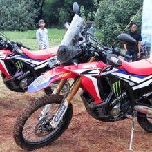 Modal Rp 6,8 Juta, Bikin CRF250Rally Makin Sporty