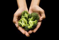 Cara Gampang Mengukur Makanan Saat Diet