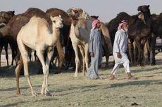 Qatar Kecam Arab Saudi karena Tolak Negosiasi