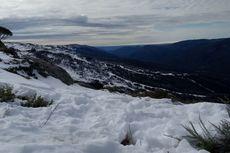Menikmati Salju Gunung Tertinggi di Australia