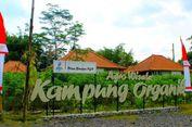 Wisata Kampung Organik, Tempat Asyik Menikmati Alam Pedesaan