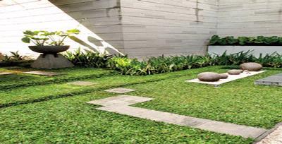 taman minimalis di halaman rumah berbentuk t