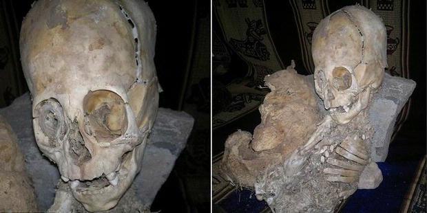 http://assets.kompas.com/data/photo/2011/11/21/0907548620X310.jpg