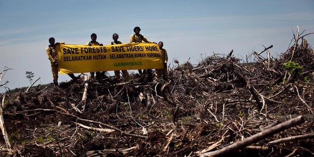 102 Konflik Lingkungan Terjadi di Indonesia Sepanjang 2011