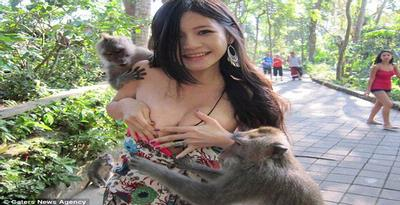 VIDEO MONYET UBUD BALI TARIK BIKINI MELOROT MODEL TAIWAN (YOUTUBE)