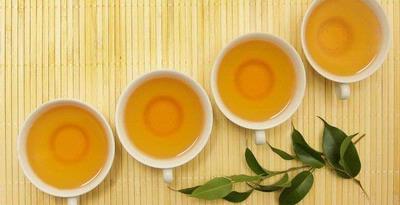 FOT TEH HIJAU Manfaat Konsumsi teh hijau menurunkan kadar lemak tubuh