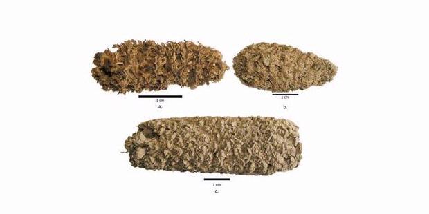 Wah Popcorn Kuno Ditemukan