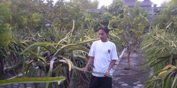 Kota Malang: Tertinggi Kedua Penderita HIV/AIDS di Jawa Timur