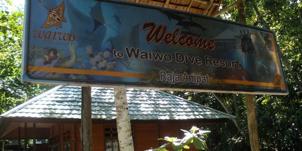 Pilihan penginapan di raja ampat thera buanathera buana - Raja laut dive resort ...