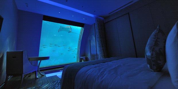 1722032-akuarium-terbesar-singapura-620X310.jpg