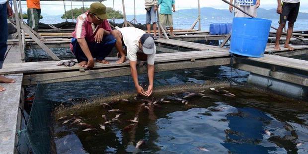 Dikecam, Pembuangan Limbah Kapal Keruk di Pulau Tegal