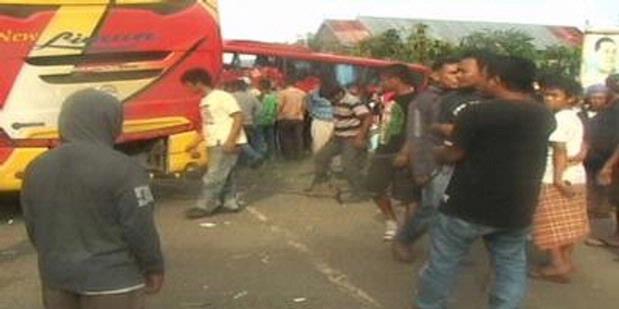 Hindari Pohon Tumbang, Dua Bus Bertabrakan