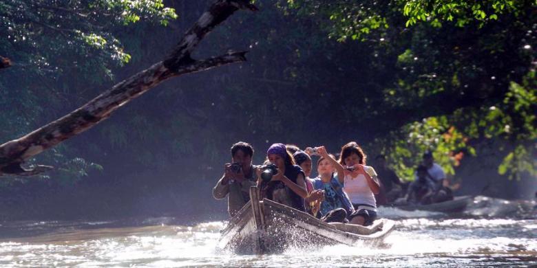 1852546 taman nasional tesso nilo 780x390 » Masyarakat Riau Diminta Ramah Kepada Wisatawan
