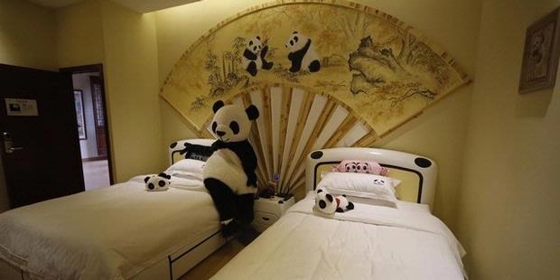 http://assets.kompas.com/data/photo/2013/03/01/1251224--haoduo-xiongmao-hotel-bertema-panda-620X310.jpg
