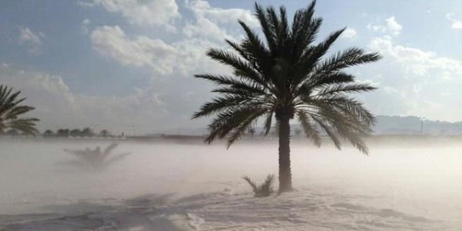 Hujan Salju dan Banjir Terjang Arab Saudi