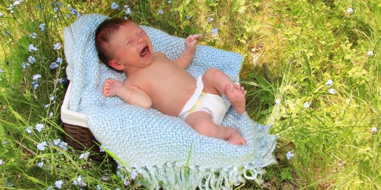 Bayi Lahir Setelah Ibu Meninggal Tertimpa Pohon