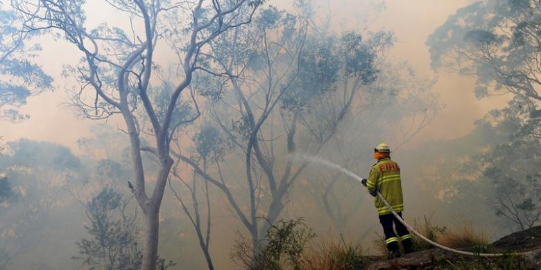 WILLIAM WEST / AFP Kebakaran hutan Australia diduga disebabkan oleh