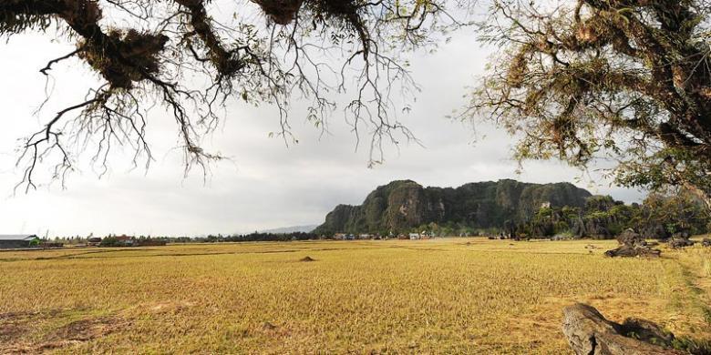 Kompas/hendra a setyawan lanskap kawasan pertanian di antara karst di