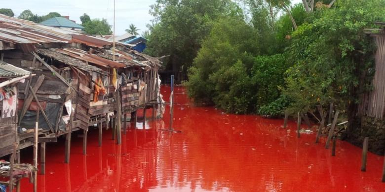 Sungai Merah Bontang Sungai Yang Mendadak Merah