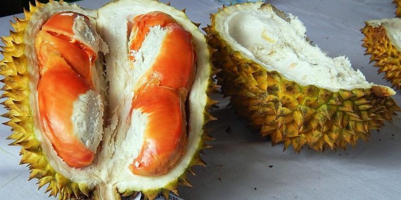 Bulan April-Mei, Siap-siap Pesta Durian Merah Di Banyuwangi