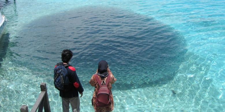 Cupuma Perairan Berau Surga Laut Yang Diincar Penjarah