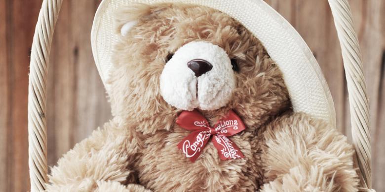 2015012boneka-teddy780x390.jpg