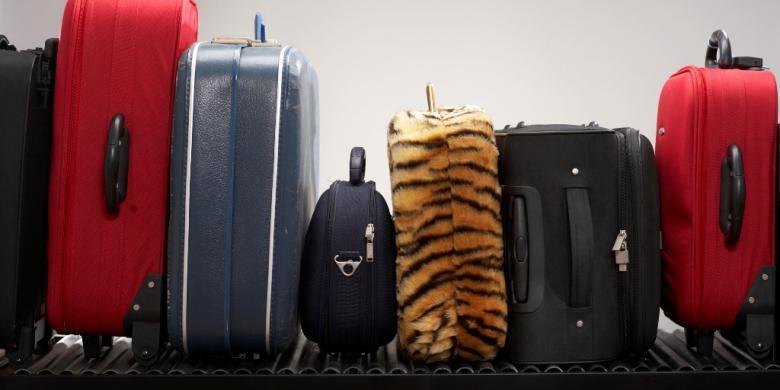 """Berencana Beli Tas """"Travel""""? Ini Tipsnya…"""