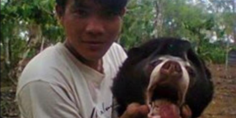 lewat facebook pemuda ini pamer kepala beruang madu yang