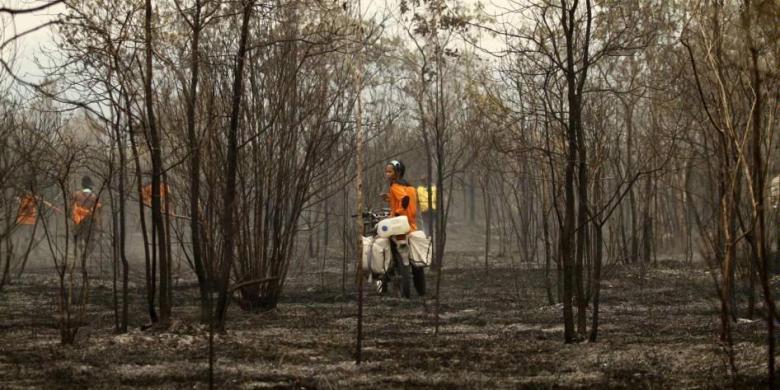 Kebakaran Hutan, Ketidaktahuan Atau Kerakusan?