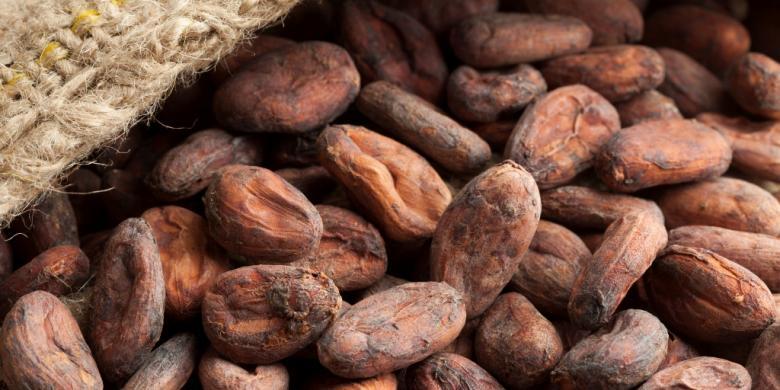 Indonesia Penghasil Cokelat Berkualitas Tinggi Di Dunia