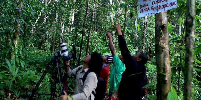 Mengejar Cenderawasih, Burung Dari Surga Papua