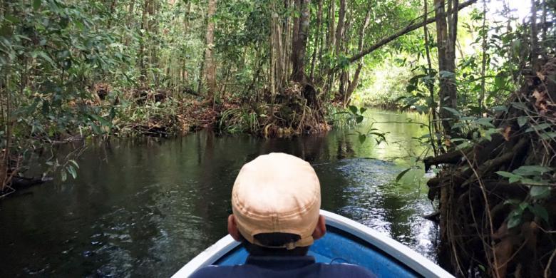 """Menyusuri """"Jalur Reptil"""" Di Taman Nasional Sebangau Kalimantan"""