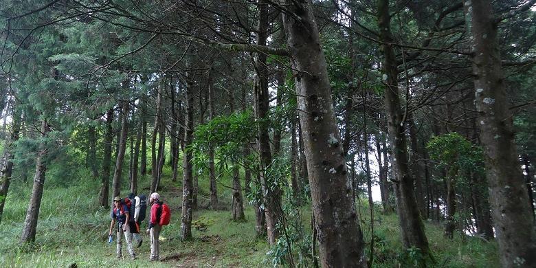 Mendaki Gunung Prau? Coba Lewat Jalur Baru Dari Dusun Wates