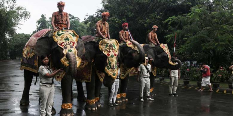 Ketika Gajah Dan Ular Ikut Upacara HUT RI Di Bali