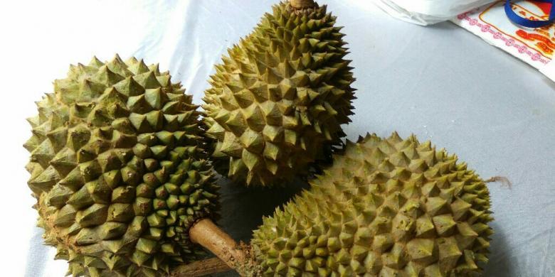 Aneh! Durian Ini Bentuknya Tak Bulat, Tapi Rasanya…