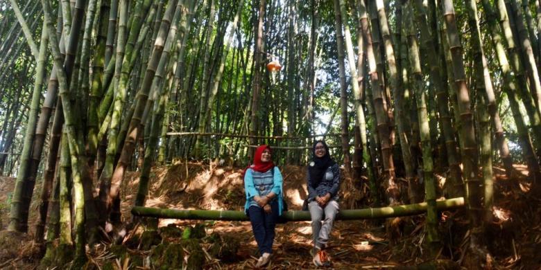 Yuk, Menikmati Keasrian Kampung Bambu Klatakan Borobudur…