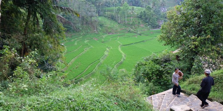 Kampung Naga, Kearifan Di Bawah Tebing